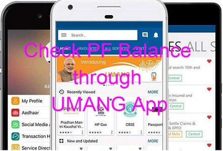 Provident Fund PF Balance through UMANG App